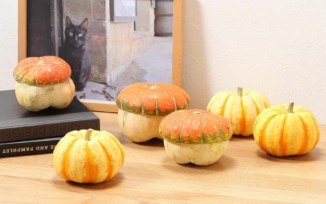 かぼちゃで楽しむハロウィン