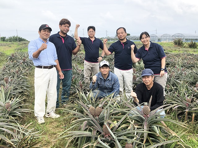供給者画像:生産者名 農業生産法人 株式会社沖縄美ら島ファーム