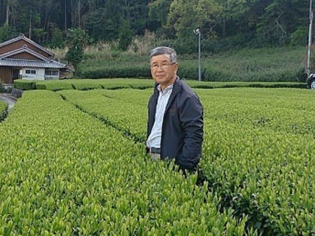 供給者画像:生産者名 有限会社茶工房・かはだ 村瀬正治郎さん