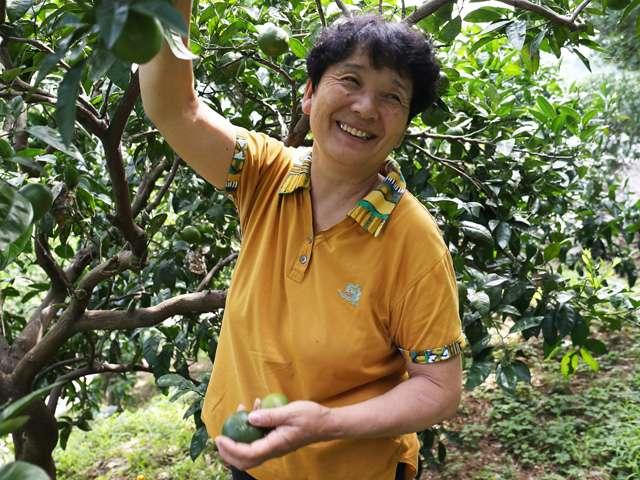供給者画像:生産者名 株式会社オレンジブロッサム 代表・村上浮子さん