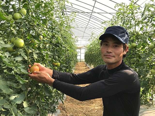 供給者画像:生産者名 穂のぼの農園