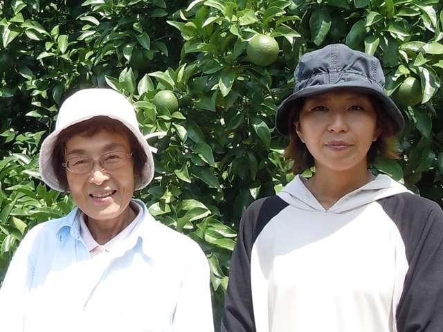 供給者画像:生産者名 平松農園