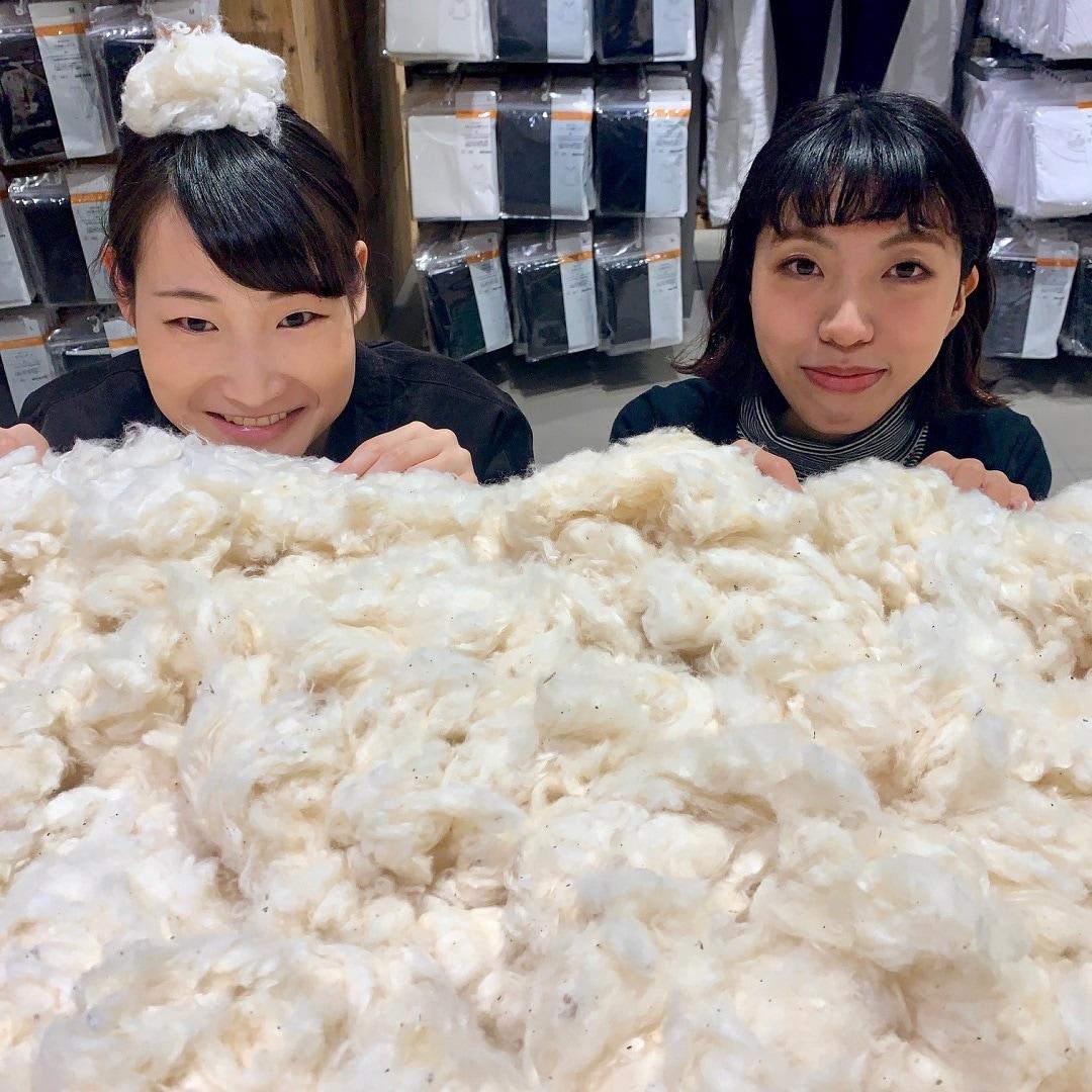 キービジュアル画像:【天満橋京阪シティモール】続・綿であったかインナーシリーズ|スタッフのおすすめ