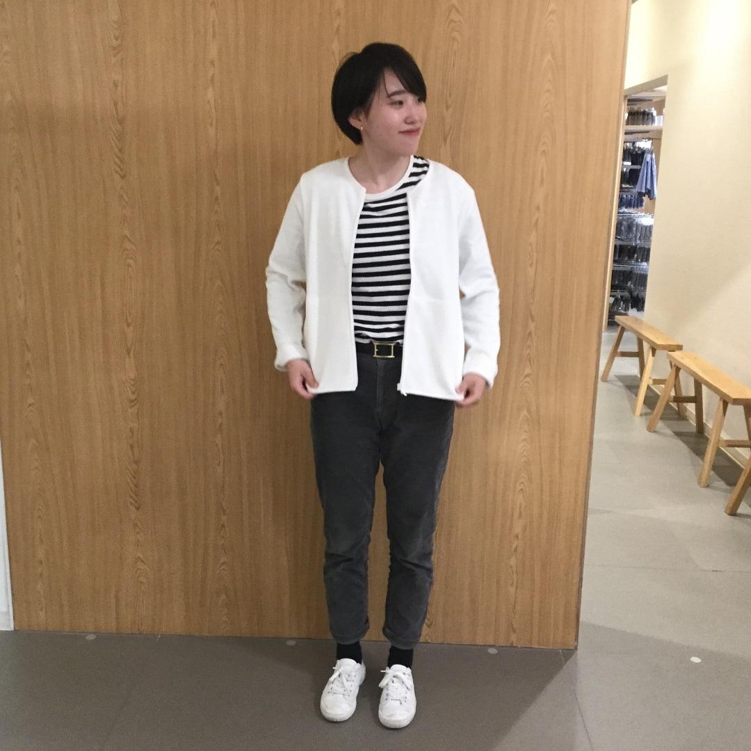 キービジュアル画像:わったん☆コレクションvol.24