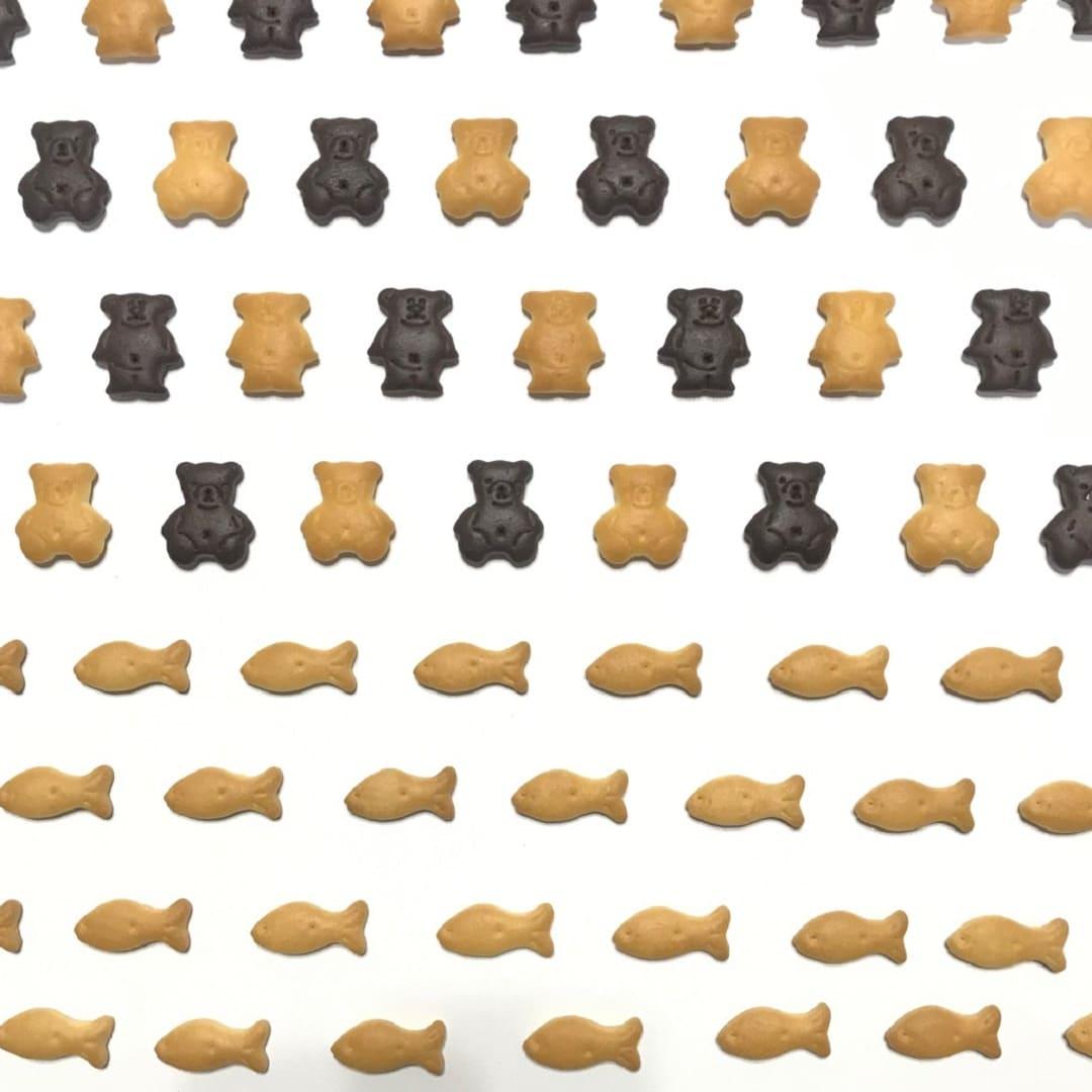 キービジュアル画像:動物のお菓子を集めました|スタッフのおすすめ
