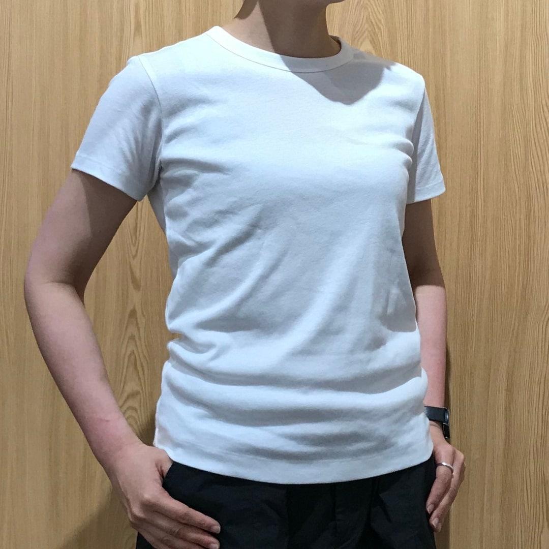 キービジュアル画像:白Tシャツを比べてみました|スタッフのおすすめ