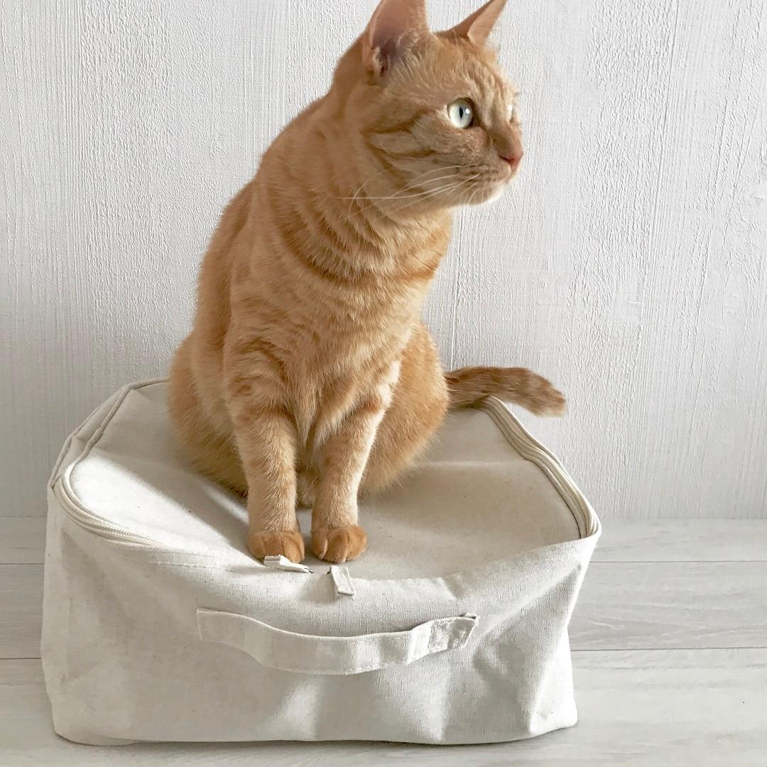 キービジュアル画像:猫と収納とわたし|スタッフのおすすめ
