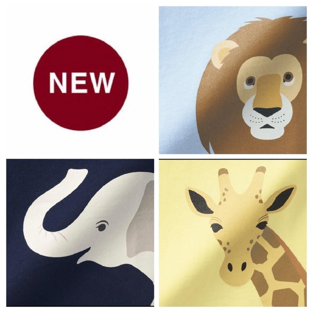 【MUJIキャナルシティ博多】新しい仲間の紹介|ライオン・キリン・アジアゾウ