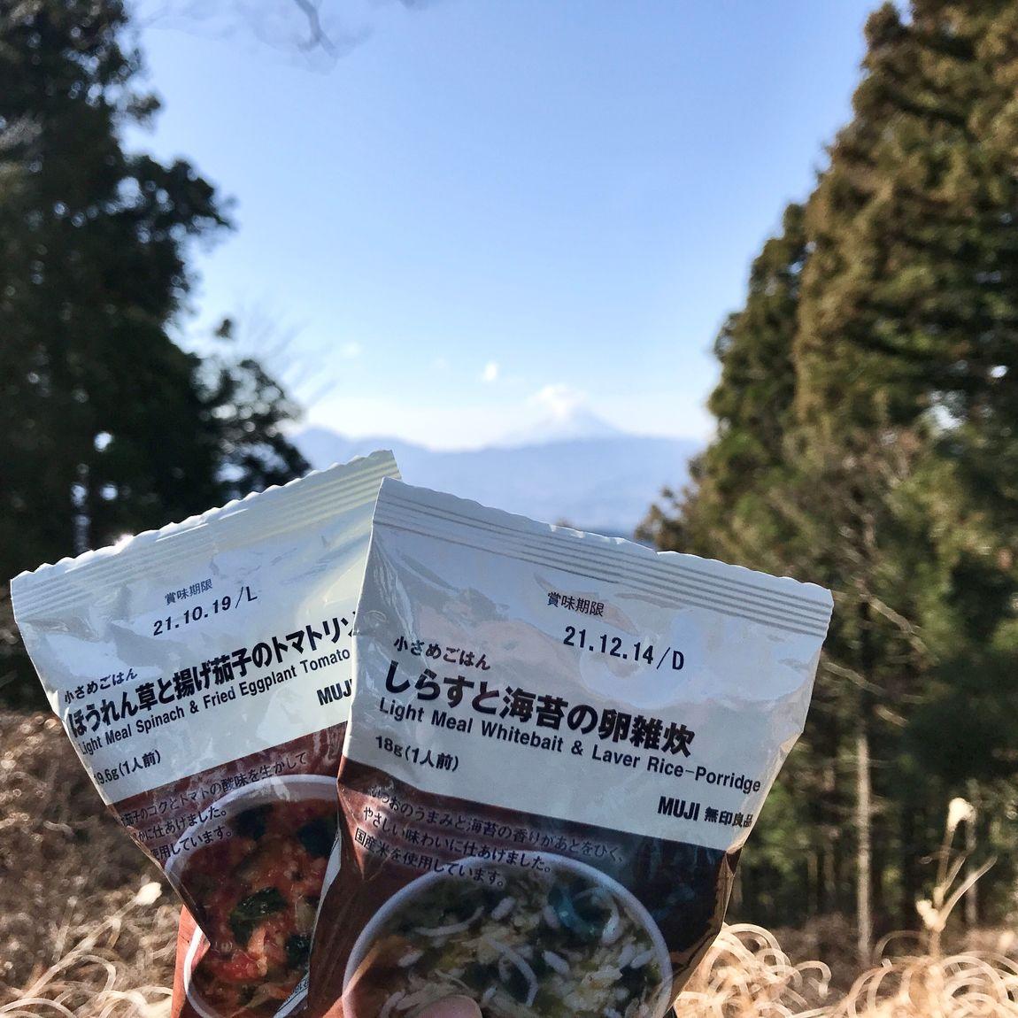 小さめごはんと富士山の写真