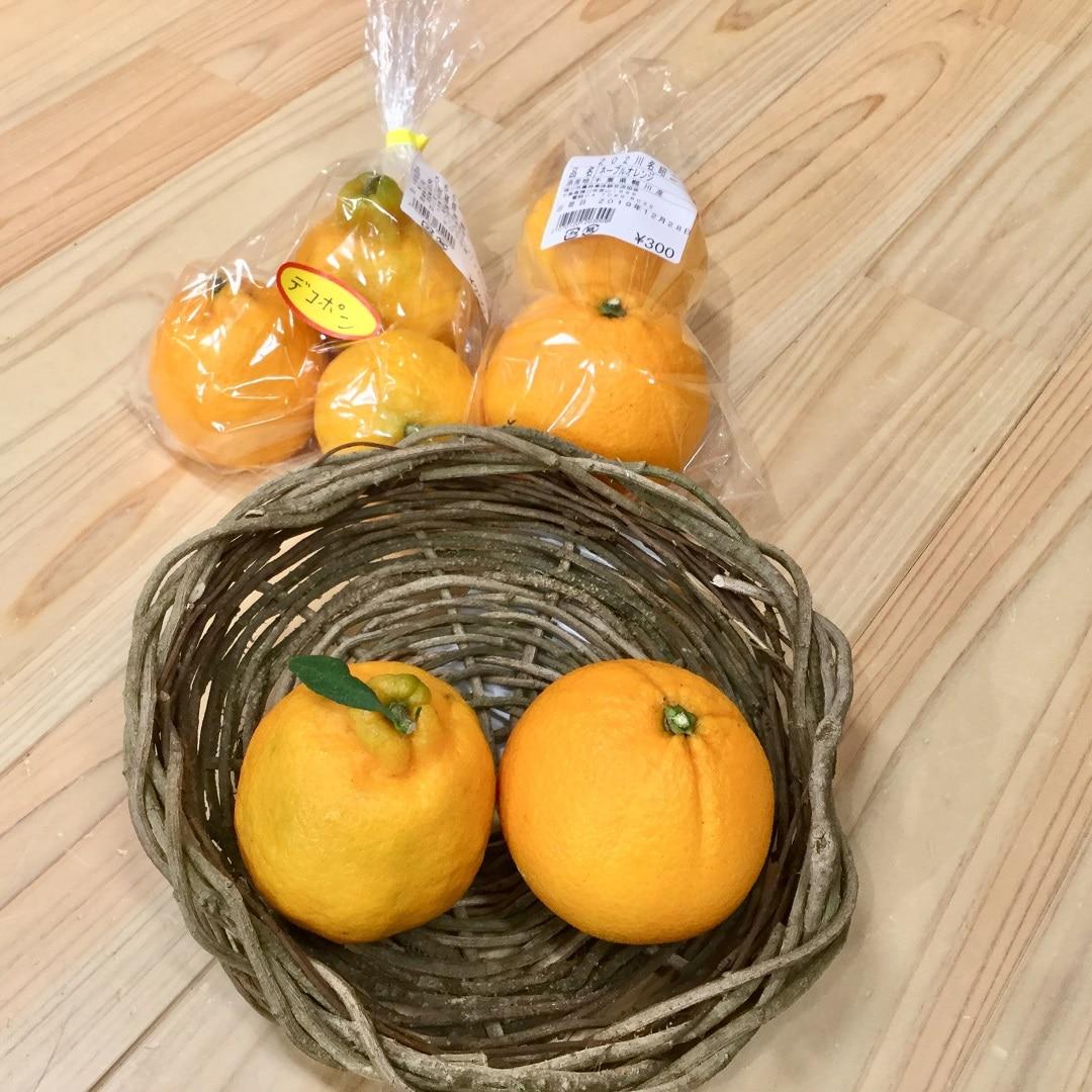 【みんなみの里】ネーブルオレンジとデコポン