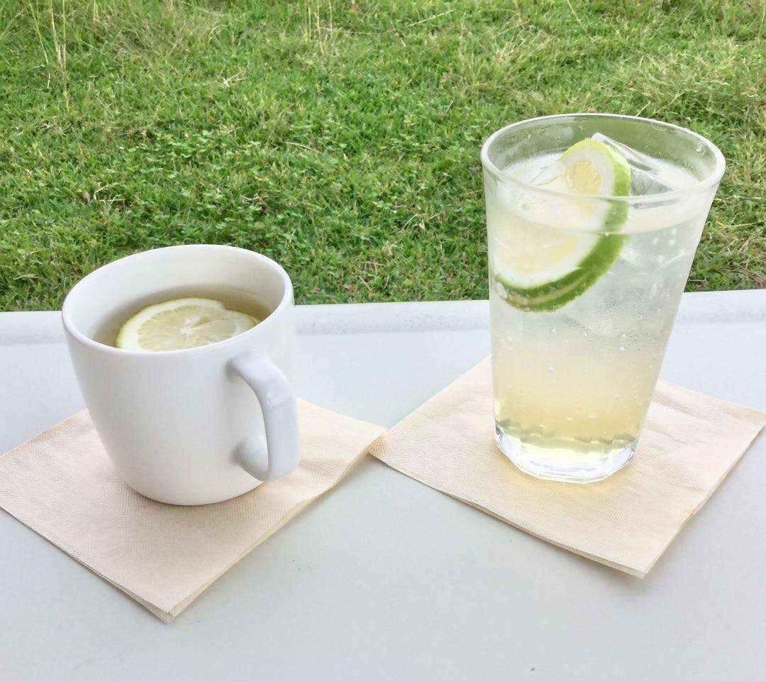 キービジュアル画像:【みんなみの里】鴨川産の「グリーンレモンシロップ」をつくってみませんか | Café & Meal MUJI みんなみの里