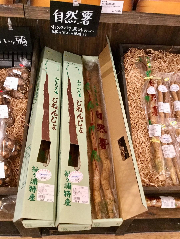 キービジュアル画像:【みんなみの里】ご贈答用に「箱入り自然薯」はいかがでしょうか