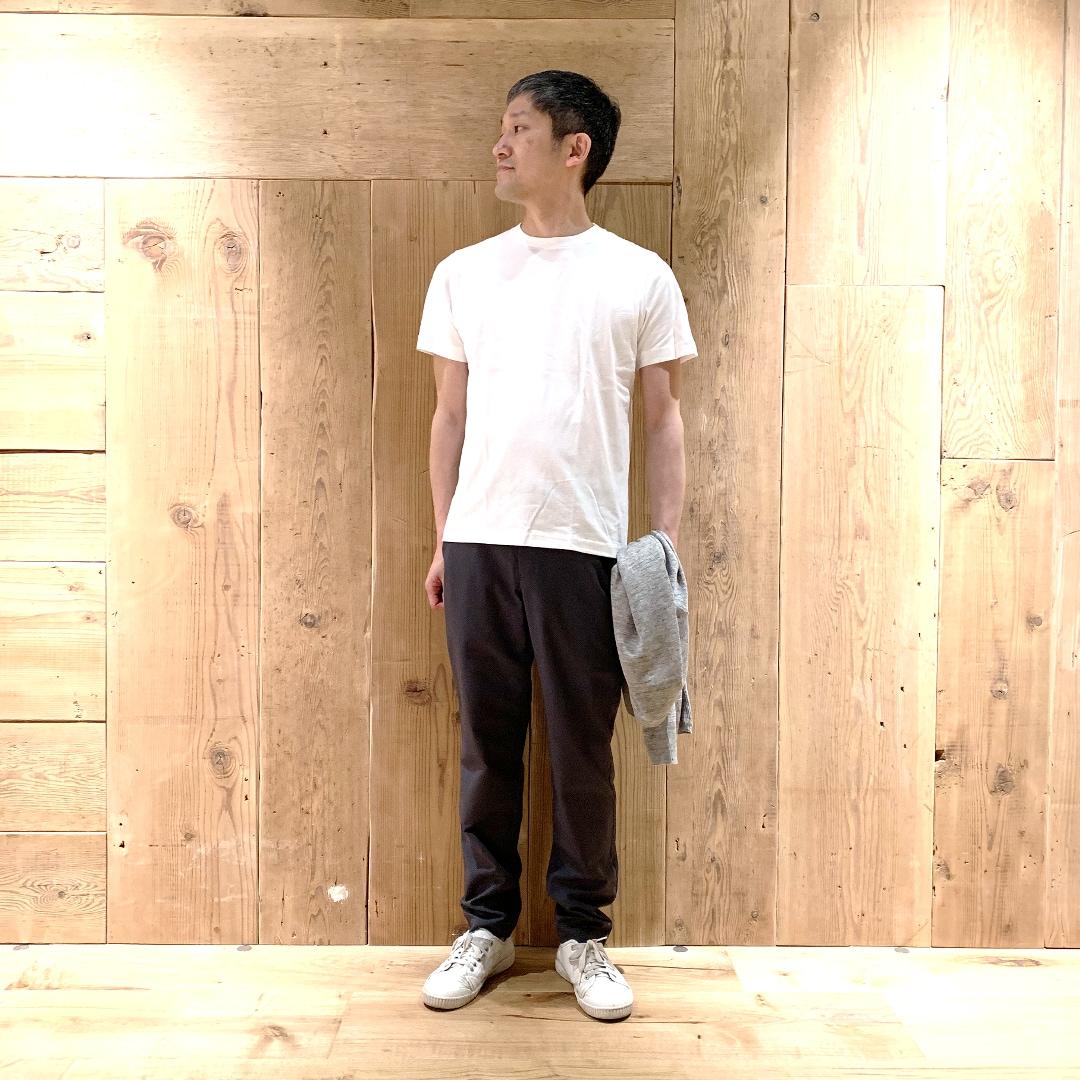 キービジュアル画像:白Tシャツコーディネート5月14日 スタイリングアドバイザー