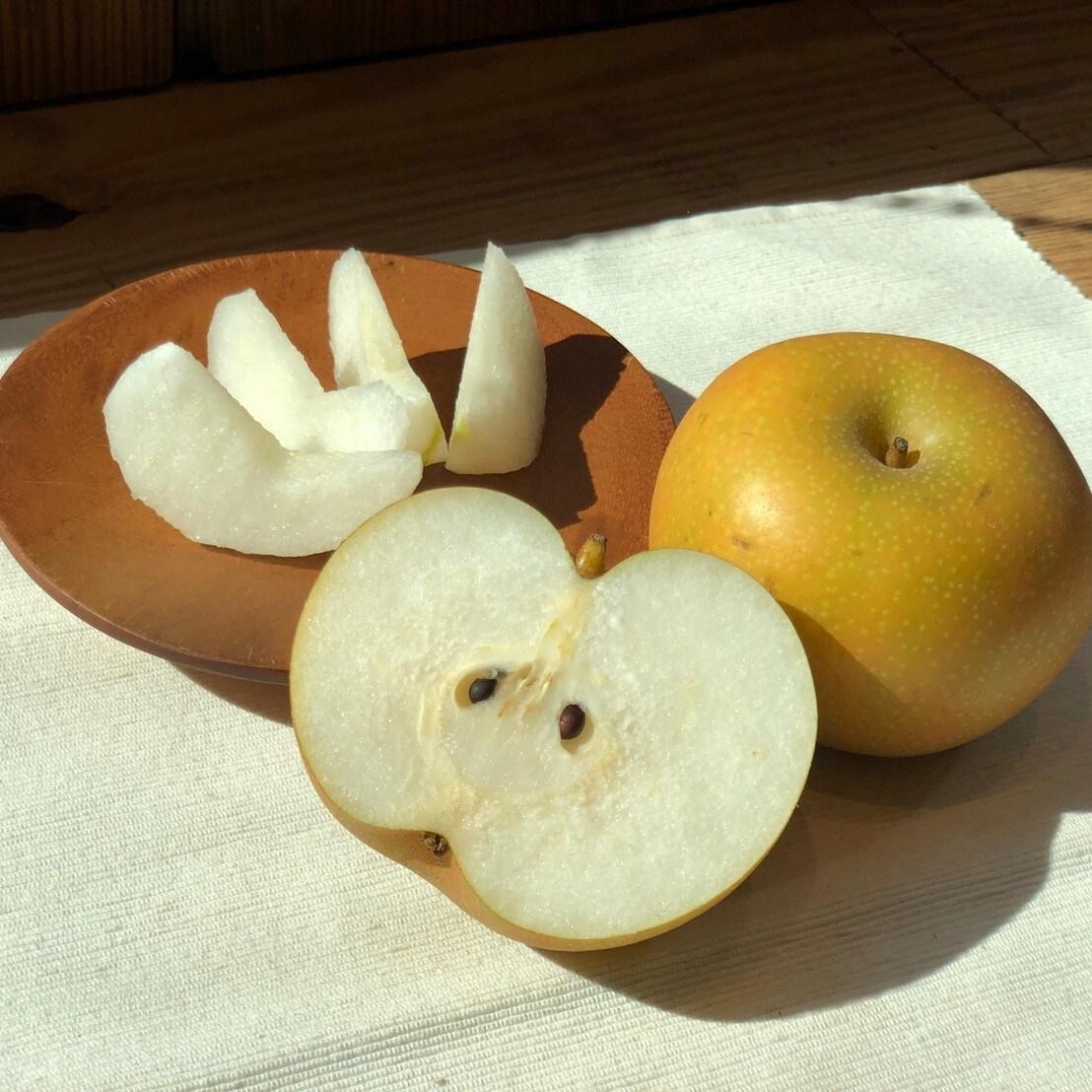 キービジュアル画像:千葉県いすみ市より梨が届きました|1F食品売場