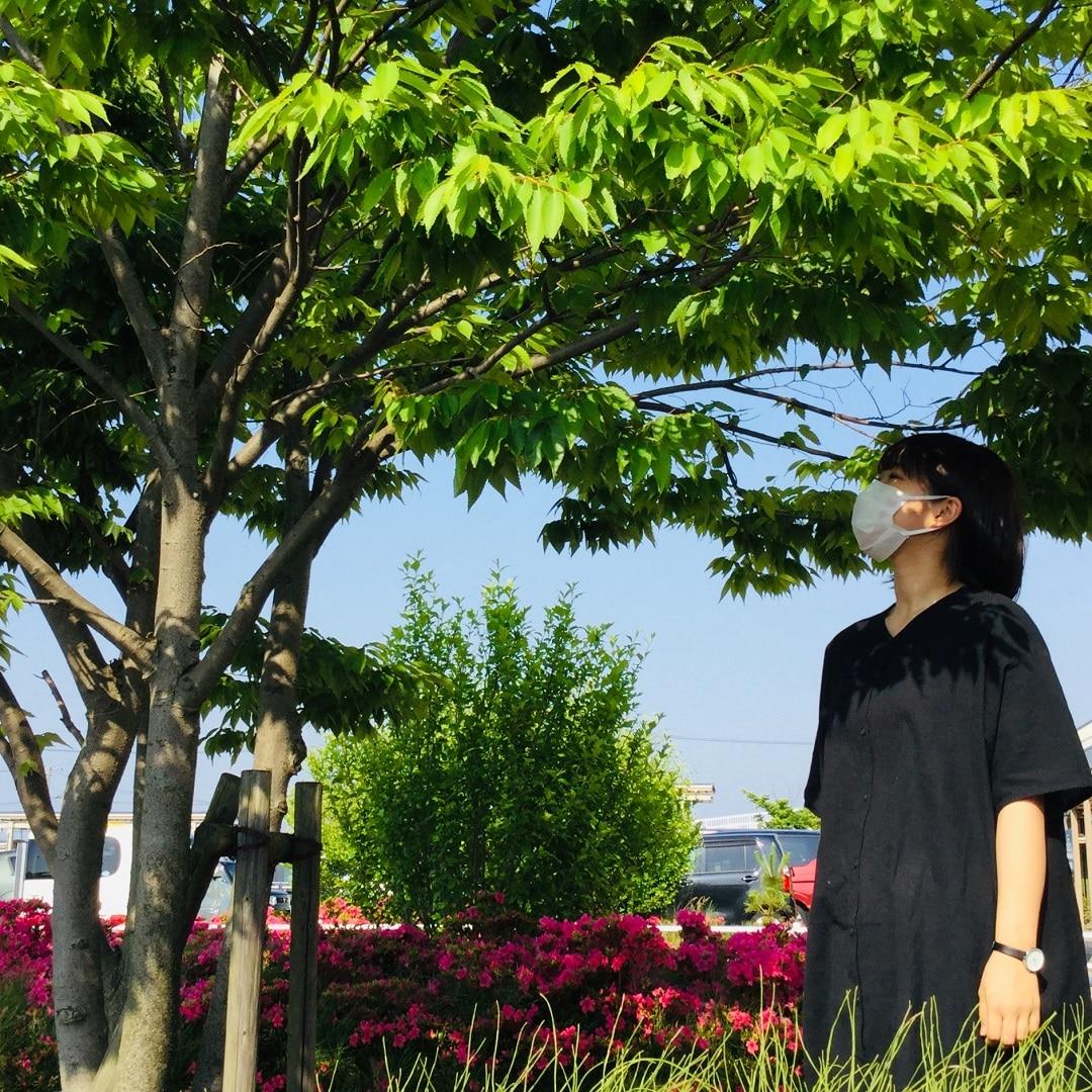 【アピタタウン金沢ベイ】マスクの収納に『片面クリアケース』『ポリプロピレンウエットシートケース』