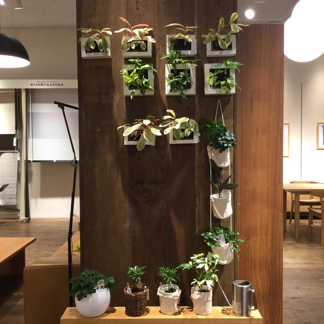 【MUJIキャナルシティ博多】壁かけタイプ