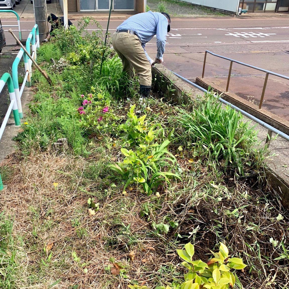 草刈り前の花壇