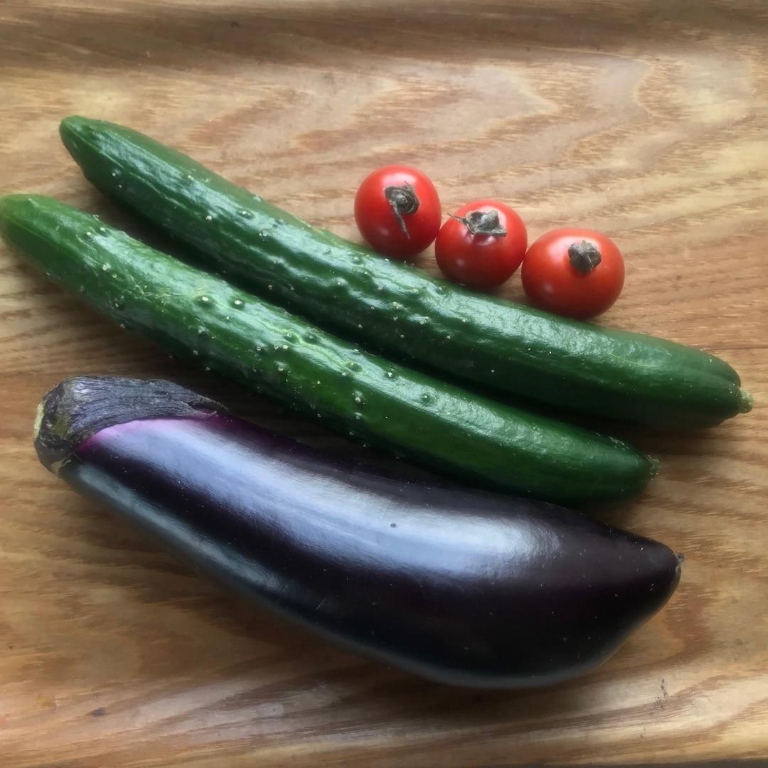 【木の葉モール橋本】発酵ぬかどこでおいしい野菜を!その①