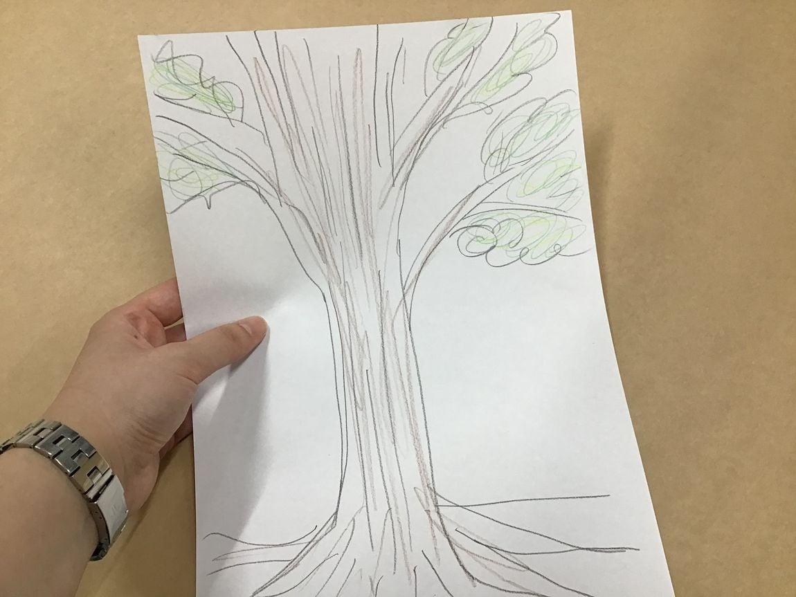 【シエスタハコダテ】身近な木を描いてみよう