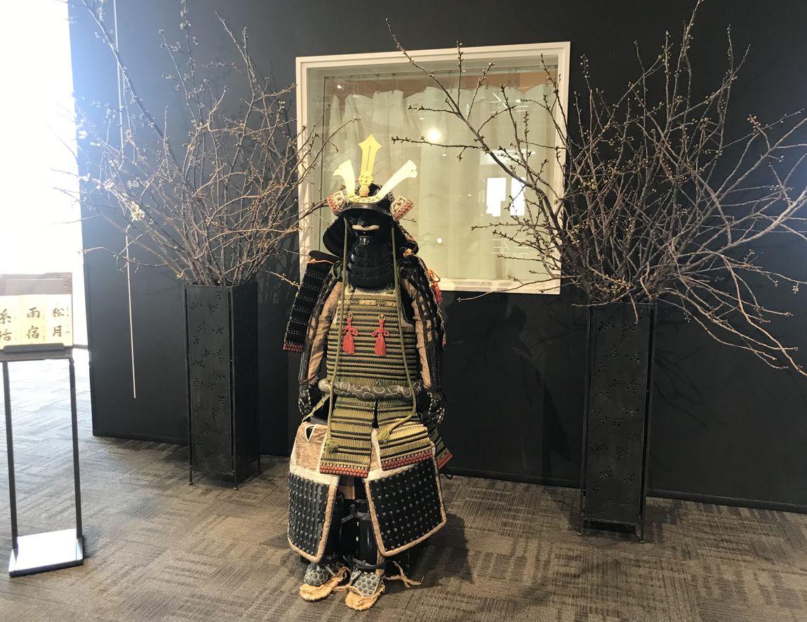 【シエスタハコダテ】松前桜の便り