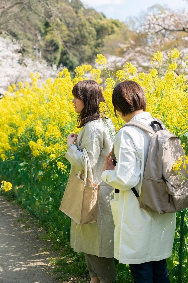 【京都山科】山科疏水の景色をお届けします