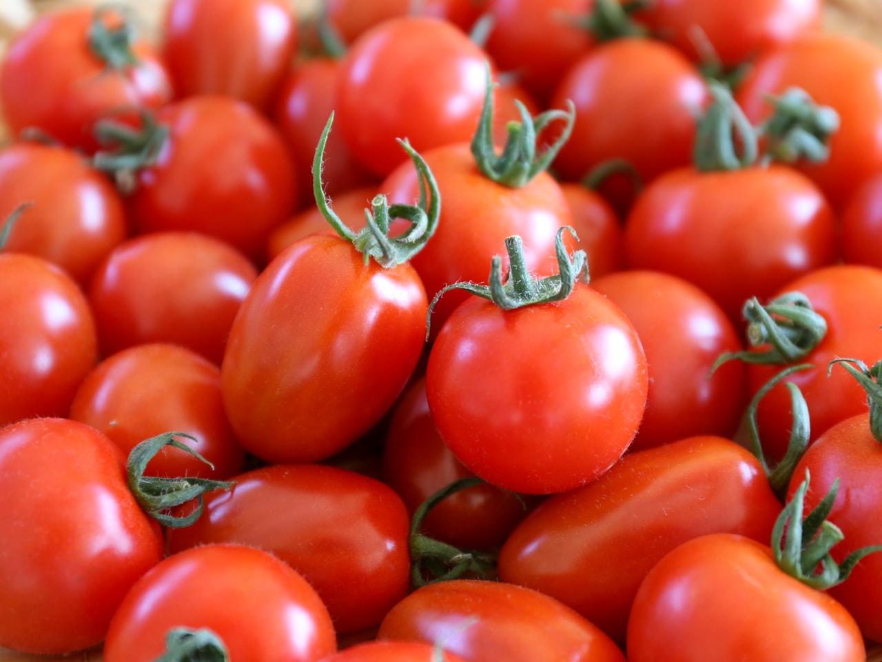 """キービジュアル画像:トマト本来の""""旨み""""が詰まったフルーツトマト"""