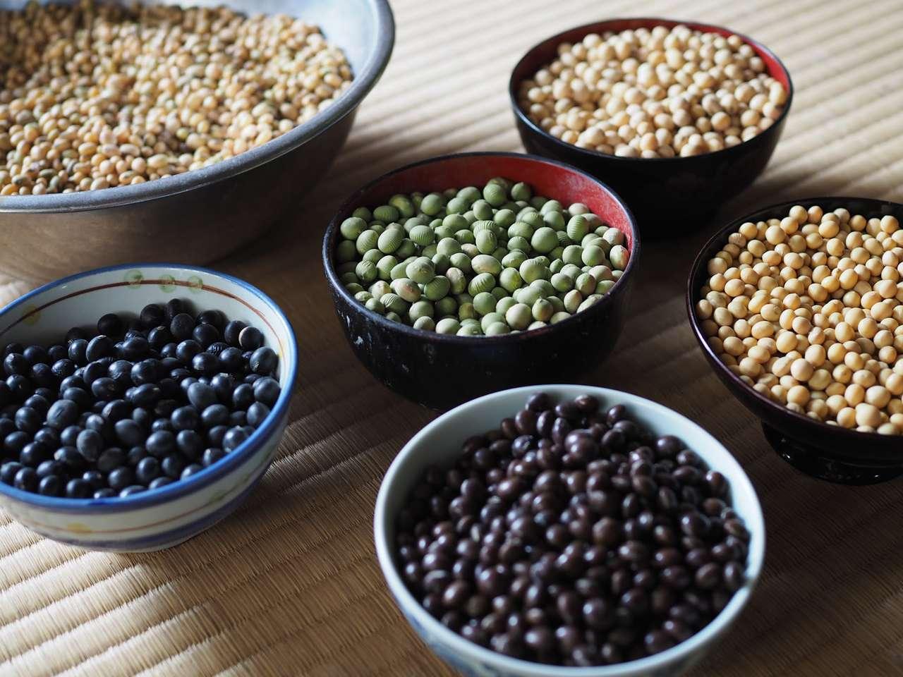 キービジュアル画像:カラフルで風味豊かな無農薬・科学肥料無使用大豆
