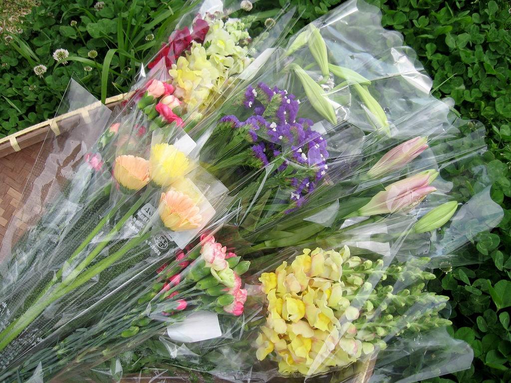 母の日に南房総の切花をお送りしてみませんか?