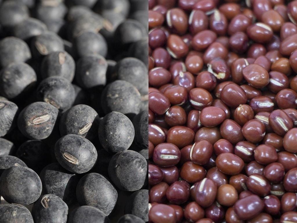 丹波の特産品「丹波黒豆」や「丹波大納言小豆」を安心・安全の有機栽培で