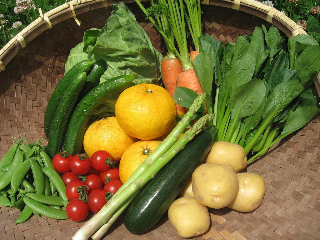 千葉鴨川!旬の野菜と果物のお楽しみセット