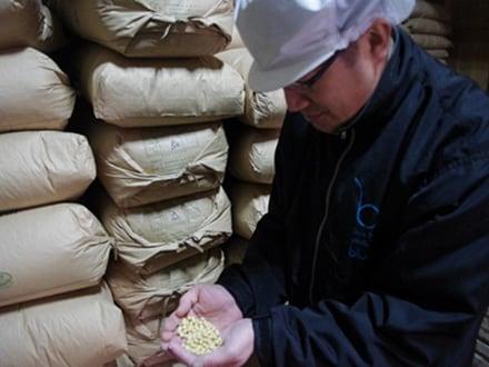 キービジュアル画像:発酵ワンダーランド