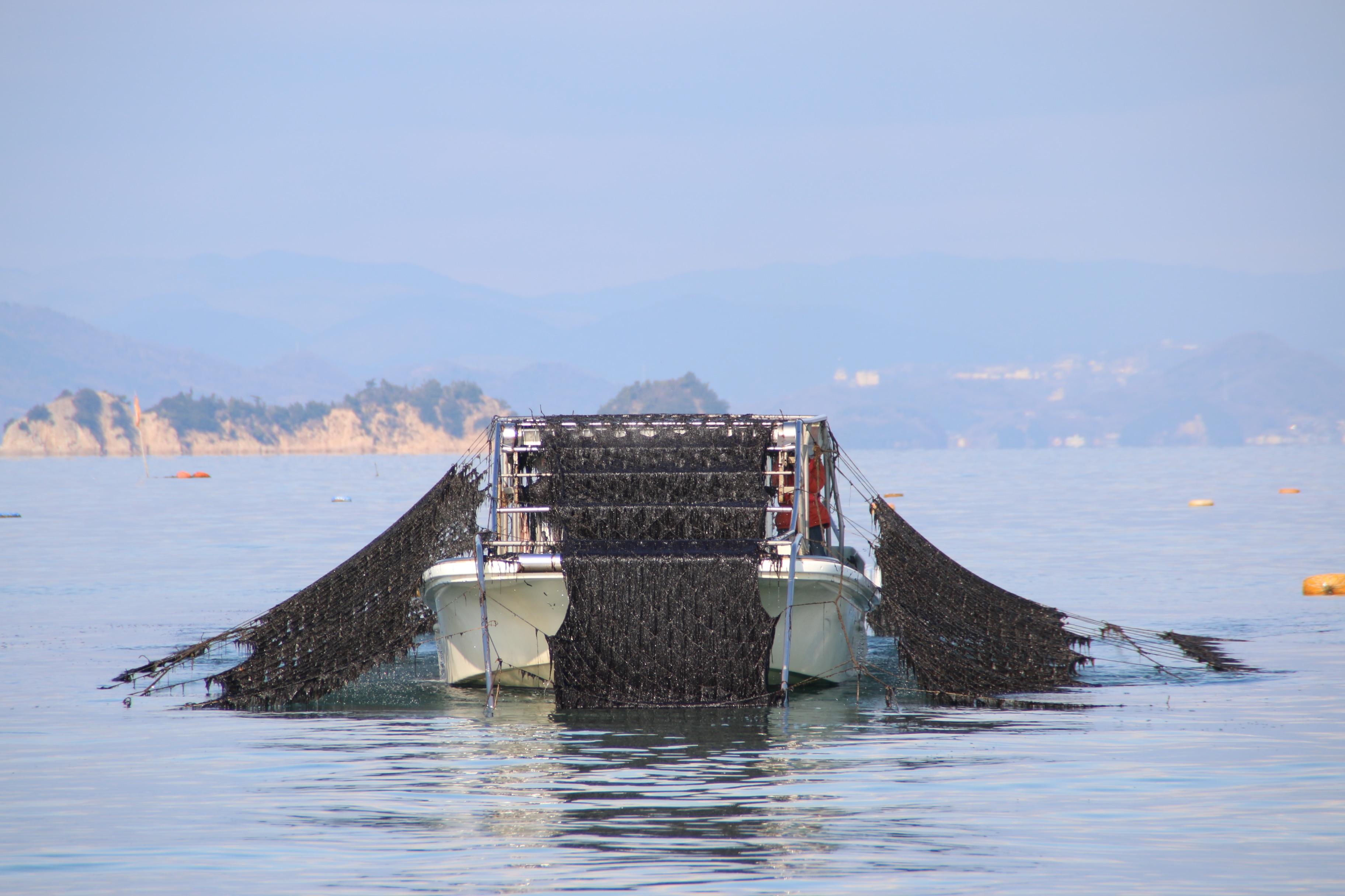 キービジュアル画像:瀬戸内、内海町田島産・自家養殖の海苔