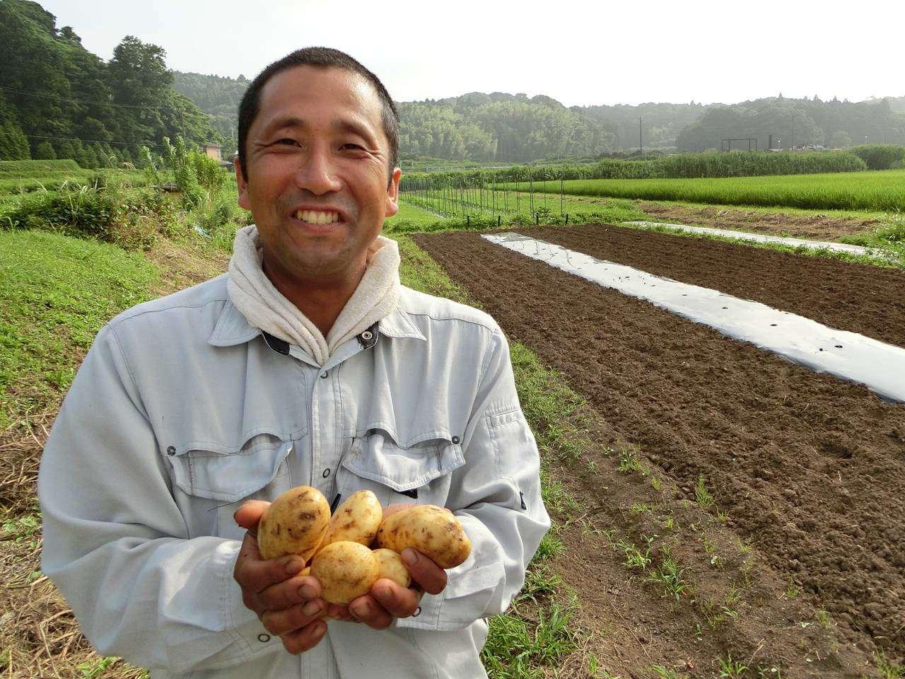 キービジュアル画像:無農薬無肥料10年の土から季節野菜パックをお届け