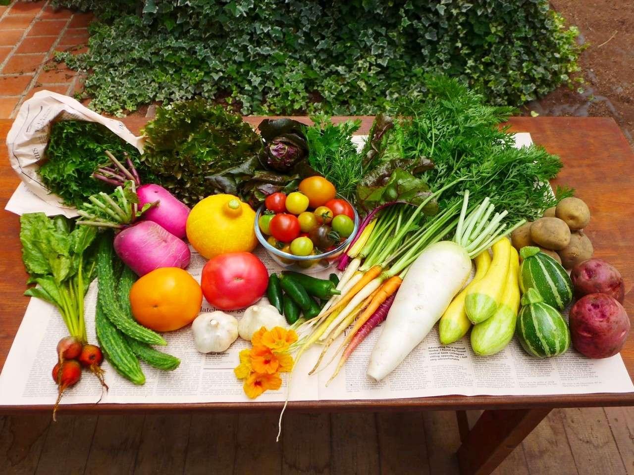 キービジュアル画像:那須高原で育った、色とりどりの「那須いろ野菜」