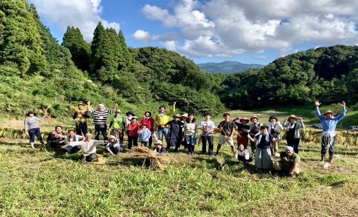 リサイズ9_稲刈り3